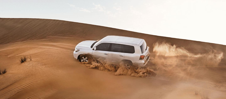 Luxurious VIP Desert Safari Dubai | Private Tour